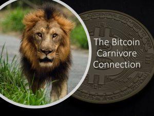 Bitcoin Carnivore
