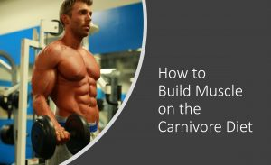 how to build muscle on the carnivore diet
