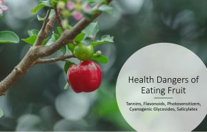 Health Dangers of Eating Fruit