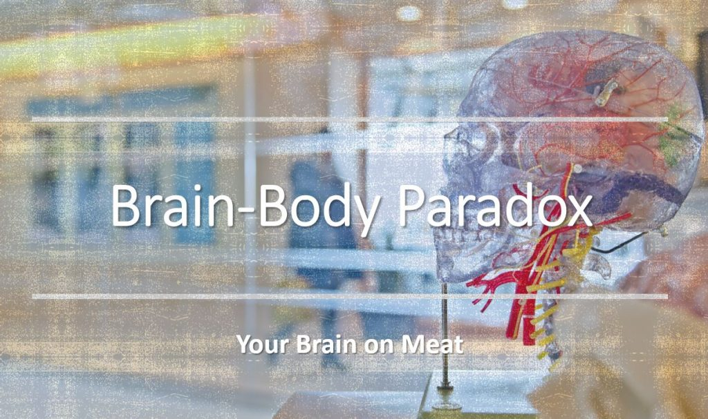 the brain-body paradox