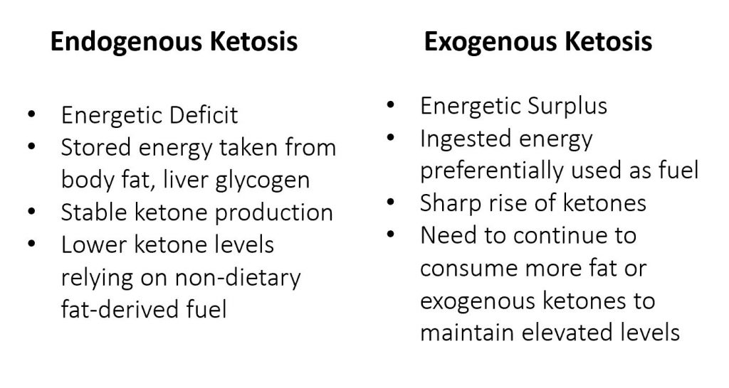 endogenous and exogenous ketosis