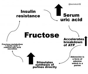 fructose and gout