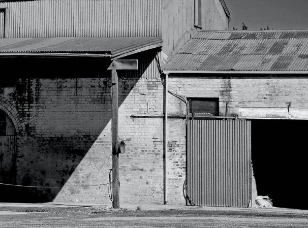 Industrial Dairy Farm