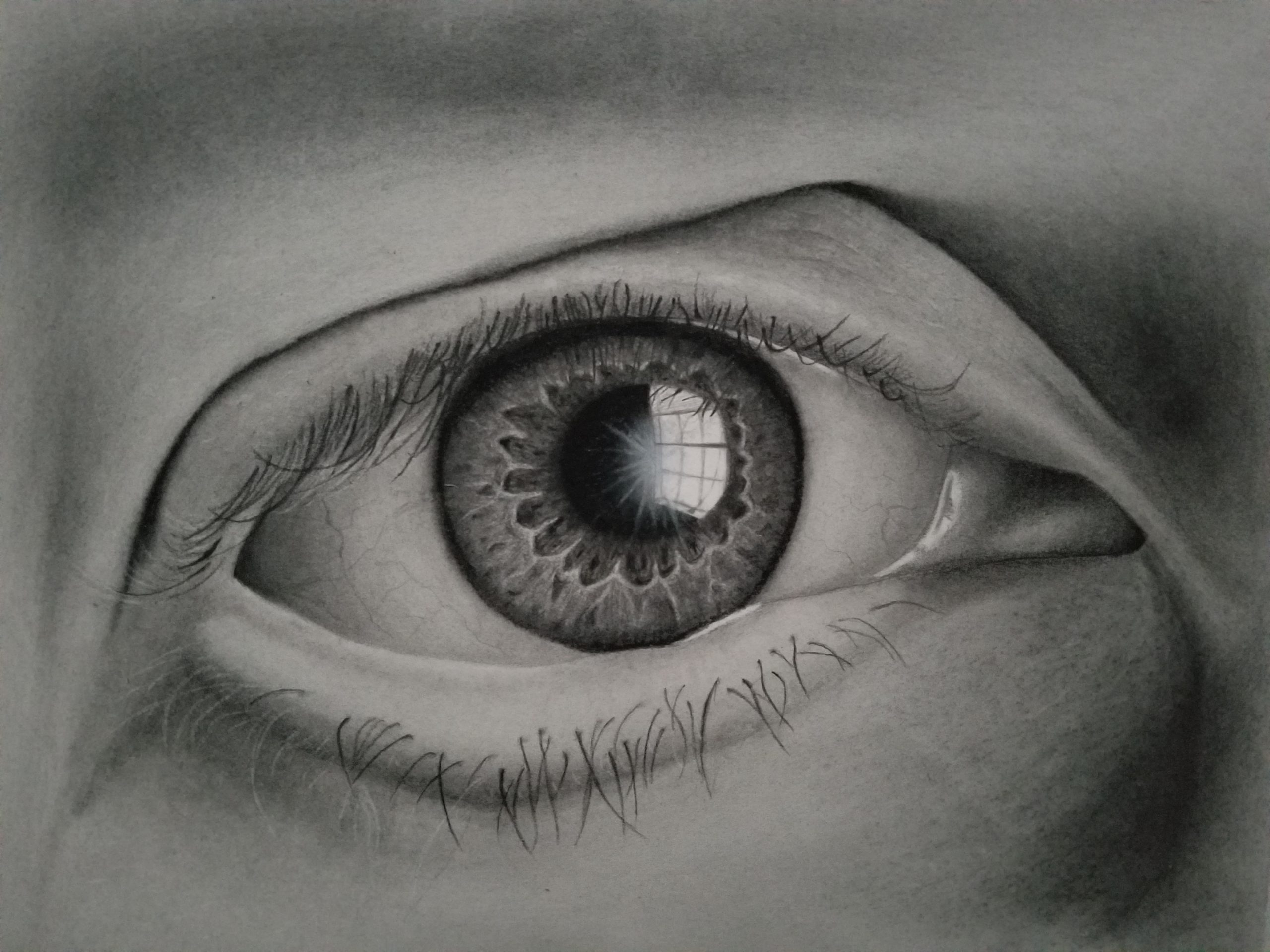 Window Eye Drawing